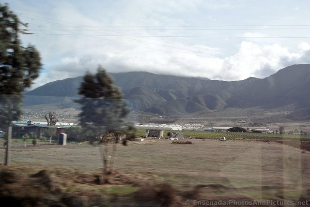 Green Hills of Ensenada.jpg